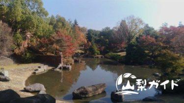 【紅葉スポット】芸術の森公園をもっと楽しむ3つのポイント