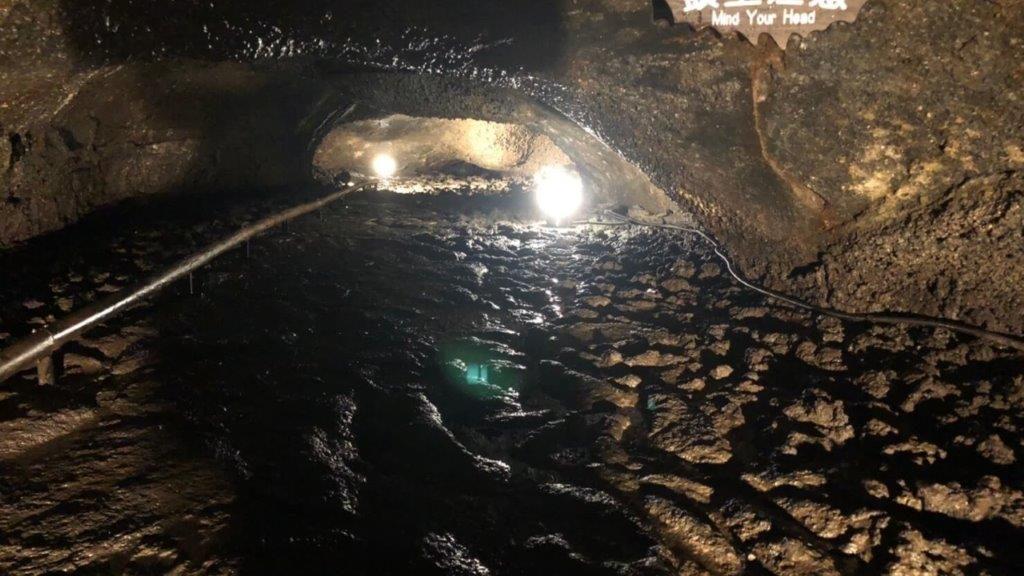 西湖コウモリ穴,5つの天然記念物