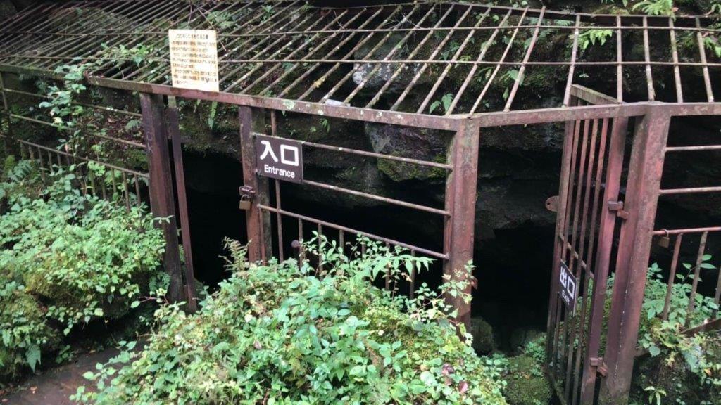 西湖コウモリ穴,入り口からすでにアドベンチャー感