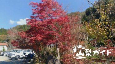 【まとめ】山梨県の紅葉スポットを1日で7ヵ所巡るモデルコース