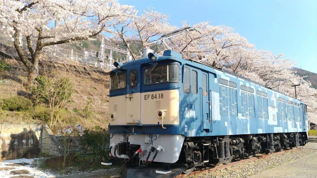 甚六桜公園,