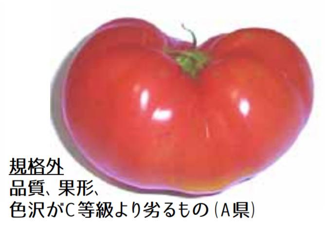 規格外野菜,トマト,
